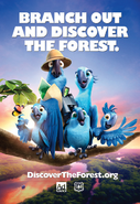 Rio2- Discover the forest.org