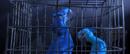 RIO stuck inna cage