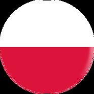 Bandeira-Afiliados-Polski
