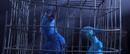 (BB 43) Blu & Jewel