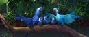 Blu and jewel with chicks by jharuccaninja04-d3h92c1