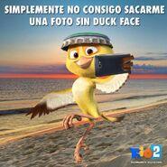 Rio2 Nico1