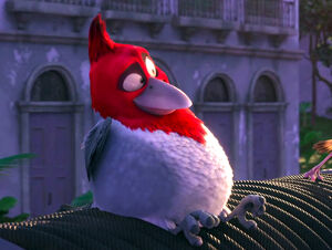 Mainpage-Navmap-Thumb-Red-crested-Cardinal.jpg
