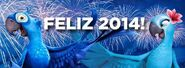 Rio Happy 2014