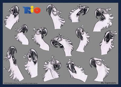 Rio-blu-expressions.jpg