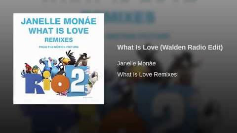 What Is Love (Walden Radio Edit)