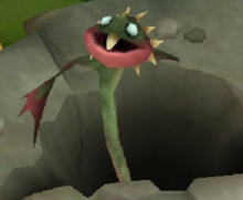 Mawdrill Baby.png
