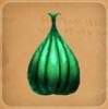 Seedling Saplinger