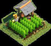 Building Farm 1 5.png