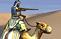 Camel Raider