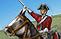 Horse Grenadier