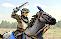 Light Cavalry (Unit)