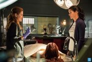 -Rizzoli-and-Isles-Episode-4-01-We-Are-Family-Promotional-Photos-rizzoli-and-isles-34649488-500-334