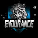 Team Endurancelogo square.png