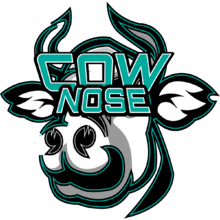 Cow Noselogo square.png