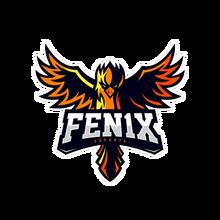 FEN1X eSportslogo square.png