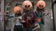 ThePumpkinheads
