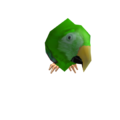 Green Macaw.png