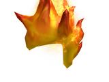 Catalog:Flaming Mohawk