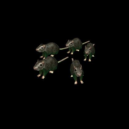 Flayed Rats