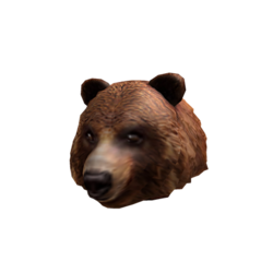 Endless Summer Grizzly Bear .png