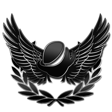 Roblox Robine Discord The Roblox Assault Team Roblox Wikia Fandom