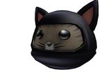 Catalog:Ninja Cat