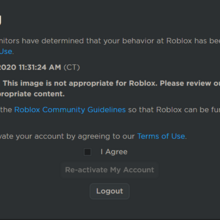 In Game Ban Roblox Ban Roblox Wikia Fandom