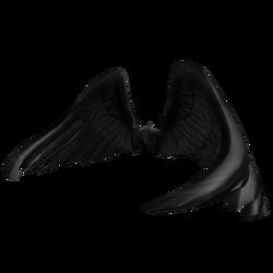 Black Wings.png