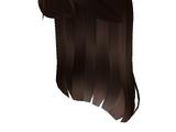 Catalog:Brown Popstar Hair