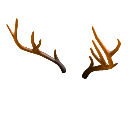 Antlers for Autumn