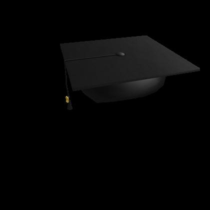 2010 Graduation Cap