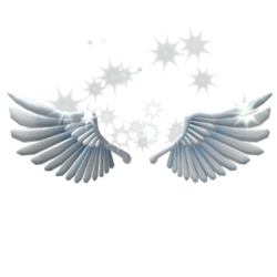 Sparkling Angel Wings.png