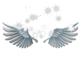 Catalog:Sparkling Angel Wings