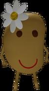 Ms. Potato