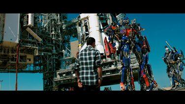 Optimus xantium.jpeg