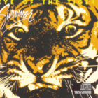 Eye of the Tiger.png