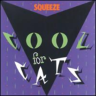 Cool for Cats.png