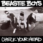 Check Your Head.png