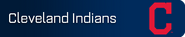 Cleveland Indians player banner icon