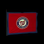 Washington Nationals antenna icon