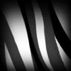 Okapi decal icon