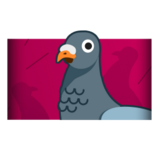 Pigeon player banner icon