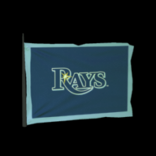 Tampa Bay Rays antenna icon