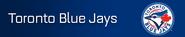 Toronto Blue Jays player banner icon