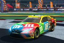 RL 0000 Toyota---Joe-Gibbs-Racing-18