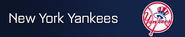 New York Yankees player banner icon