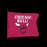 Chicago Bulls antenna icon