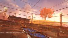 Farmstead arena 1