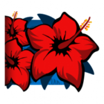 Hibiscus player banner icon.png